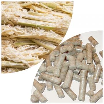Sugar cane residue (Bagasse)
